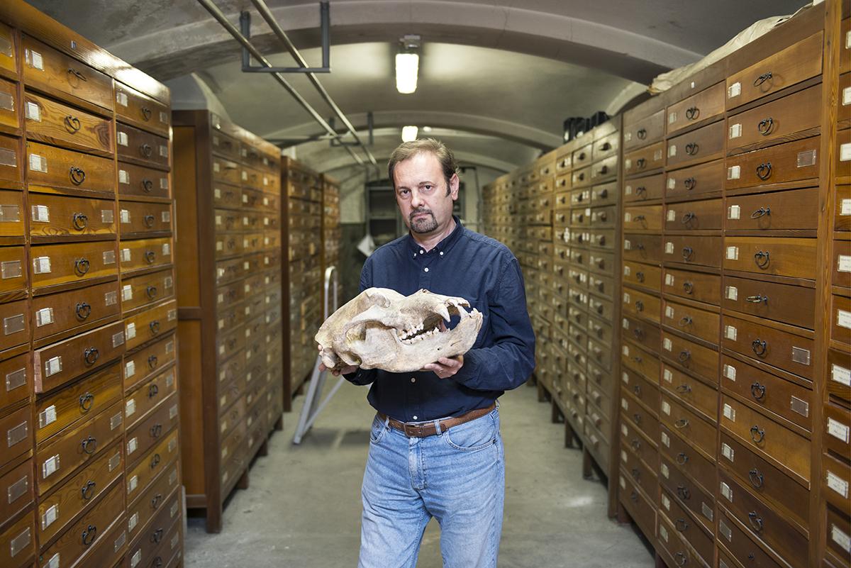 PiM museo storia naturale
